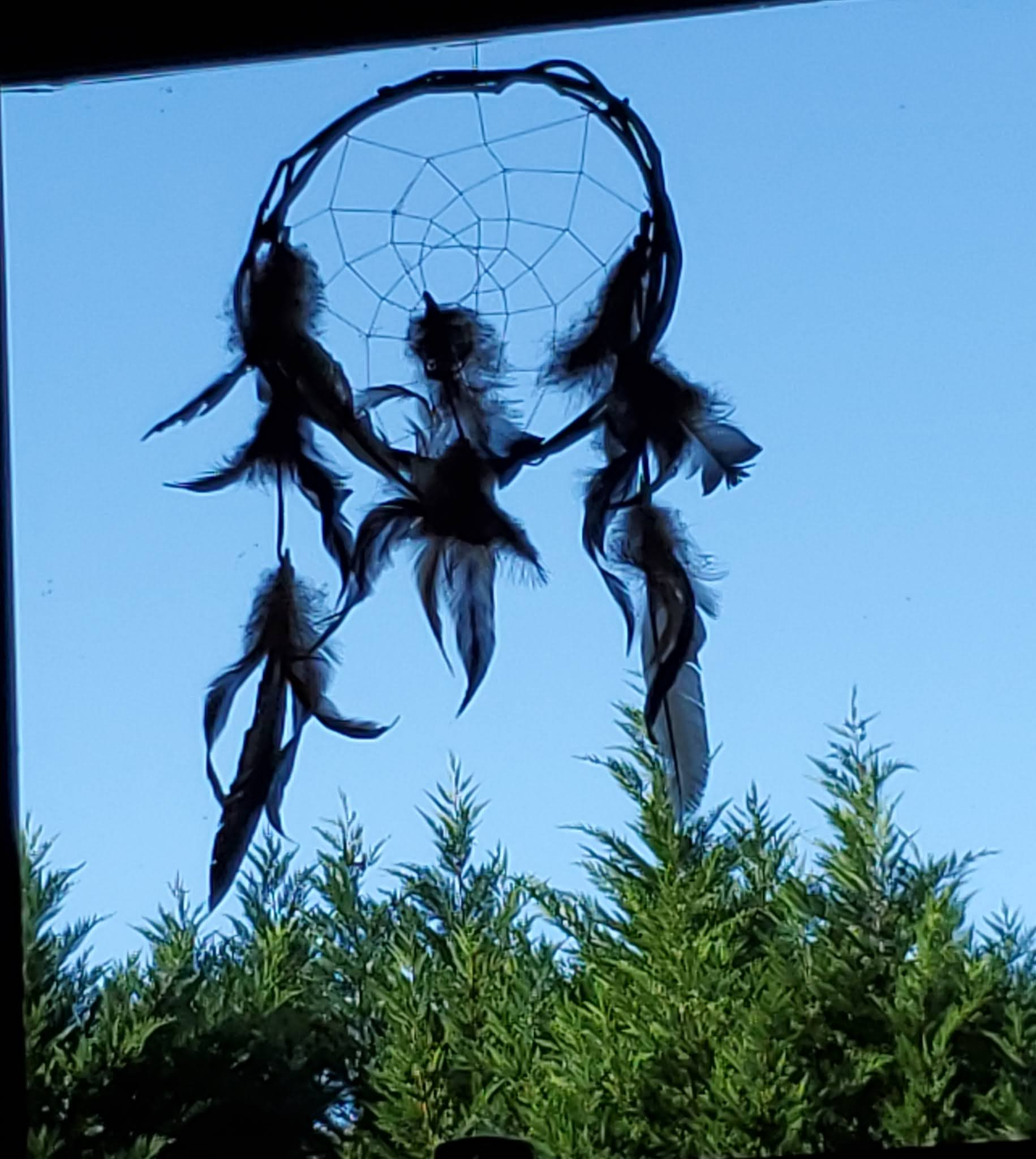 This is a picture of a dream catcher with feathers hanging in a window with a blue sky in the background.