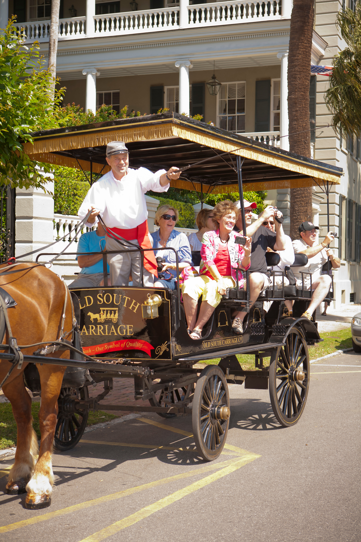 This is a picture of the Old South Carriage Company with a horse drawn carriage and driver in the downtown Charleston, SC. There are tourists sitting in the back with cameras taking pictures.